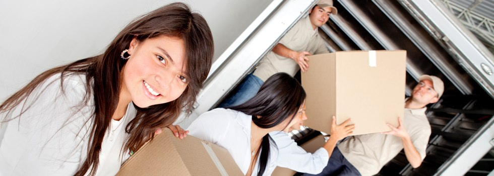 Professional Removalists Stratford NSW